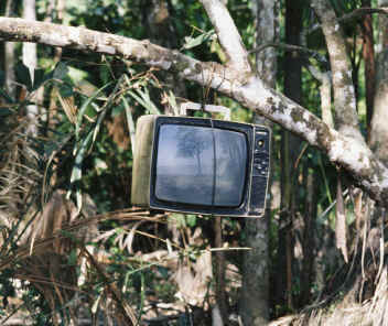 TV in the Jungle