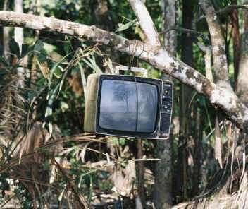 TV in the Jungle