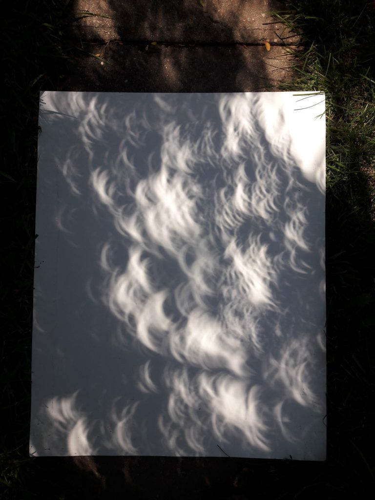 Nature's Pinhole Camera in Deep Shade